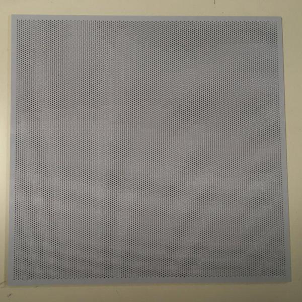 Perforierte Platte / Lochplatte V2 für Raise3D Pro2 Serie